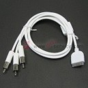 iPhone AV Cable